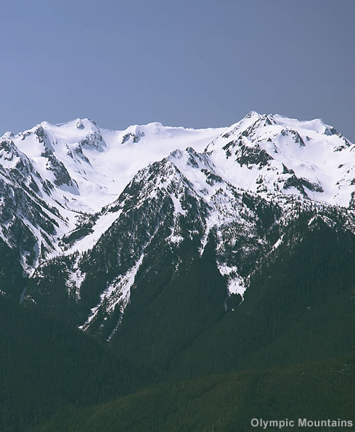 View of Olympic Mountains from Hurricane Ridge
